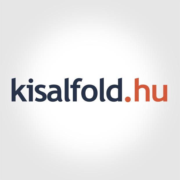 Remekül szerepeltek a győri kézilabdások a diákolimpia országos döntőn
